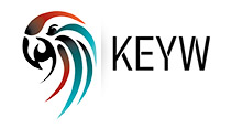 Benchmark places Michelle Cook as EVP Business Development at KEYW